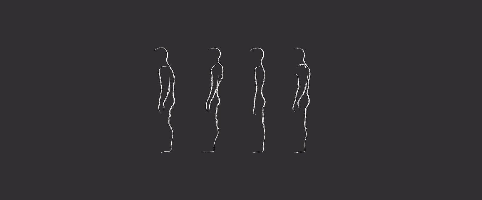 2מבנה גוף